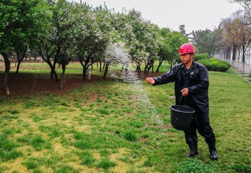 湖南园林绿化处理